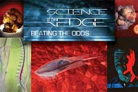 Science at the Edge: Beating the Odds